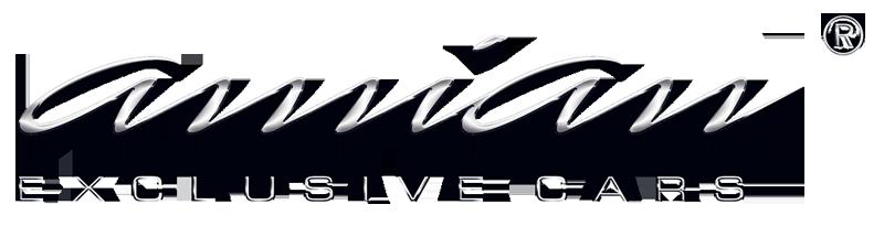 Logo Amian Cars